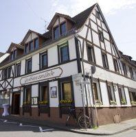 Titelbild: Heidelberg-Rohrbach - Die Linde